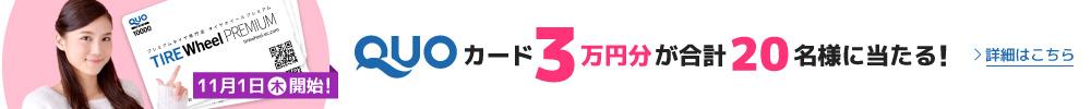 QUOカード3万円分プレゼントキャンペーン(2018年11月1日(木)~12月24日(月))